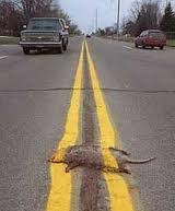 Sometimes yellow lines save your life…….  Other times they are just paint.