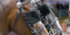 The Three Blinders